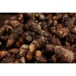 里芋の保存は土付きの方が良い?水洗いしたんけど。長期保存は冷凍?